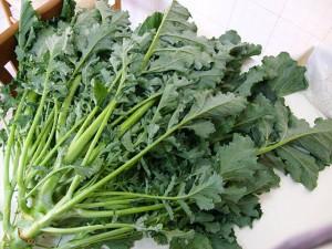 broccolo fiolaro di creazzo in cucina